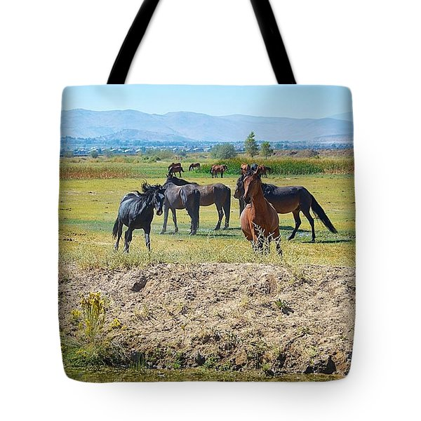 Mustangs Playing  Tote Bag by Maria Jansson