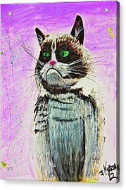 The Grumpy Cat From The Internets Acrylic Print by eVol i