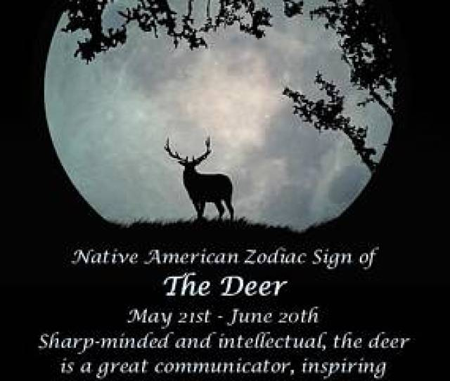 Horoscope Photograph Native American Zodiac Sign Of The Deer By Stephanie Laird