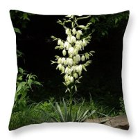Throw Pillow featuring the photograph Yucca Blossoms by Nancy Ayanna Wyatt