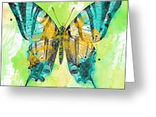Butterfly On Green Watercolor B Painting By Jean Plout