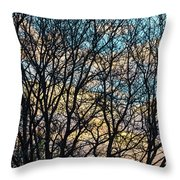 Tree Branches And Colorful Clouds Shower Curtain For Sale By James BO Insogna