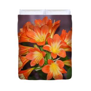 Clivia Blossoms Duvet Cover for Sale by Nancy Ayanna Wyatt