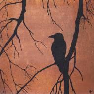 Raven in sheaok