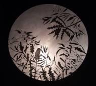 Woodland moon
