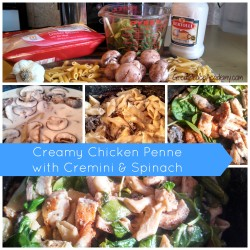 Crockpot meal for winter warmth