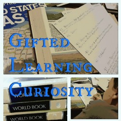 Gifted Learning Curiosity   Great Peace Academy