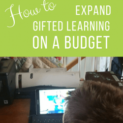 How to Expand Gifted Learning Opportunities on a Budget | GreatPeaceAcademy.com #ihsnet