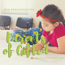 Web Resources for Parents of Gifted | GreatPeaceAcademy.com #ihsnet #homeschool #gtchat | Find support, groups, blogs, books & more.