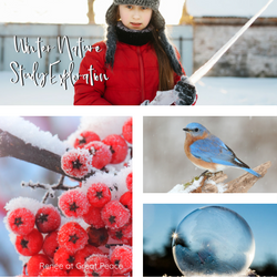 Don't Let the Cold Keep you from Winter a Nature Study Exploration | Renée at Great Peace #homeschool #science #naturestudy #ihsnet