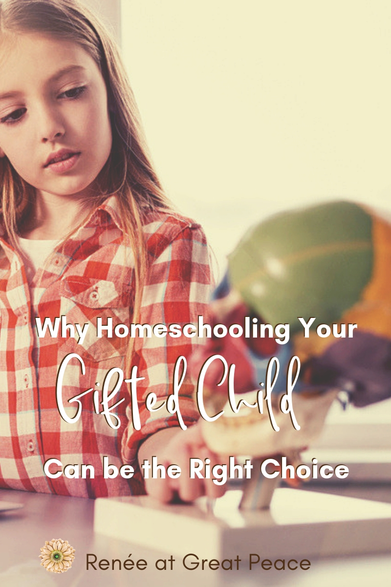 Why Homeschooling a Gifted Child Can be the Right Choice   Renée at Great Peace #homeschool #gifted #giftedchildren #gtchat #ihsnet