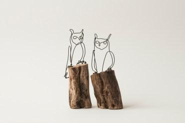 Owls 2014