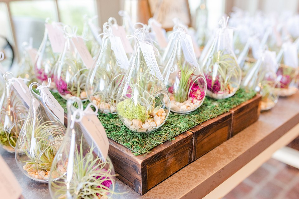 terrariums photographed by Renee Nicolo Photography for French Creek Golf Club wedding reception