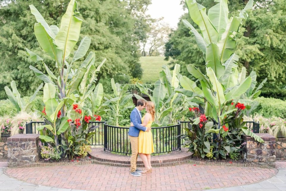 summer garden engagement session with Renee Nicolo Photography
