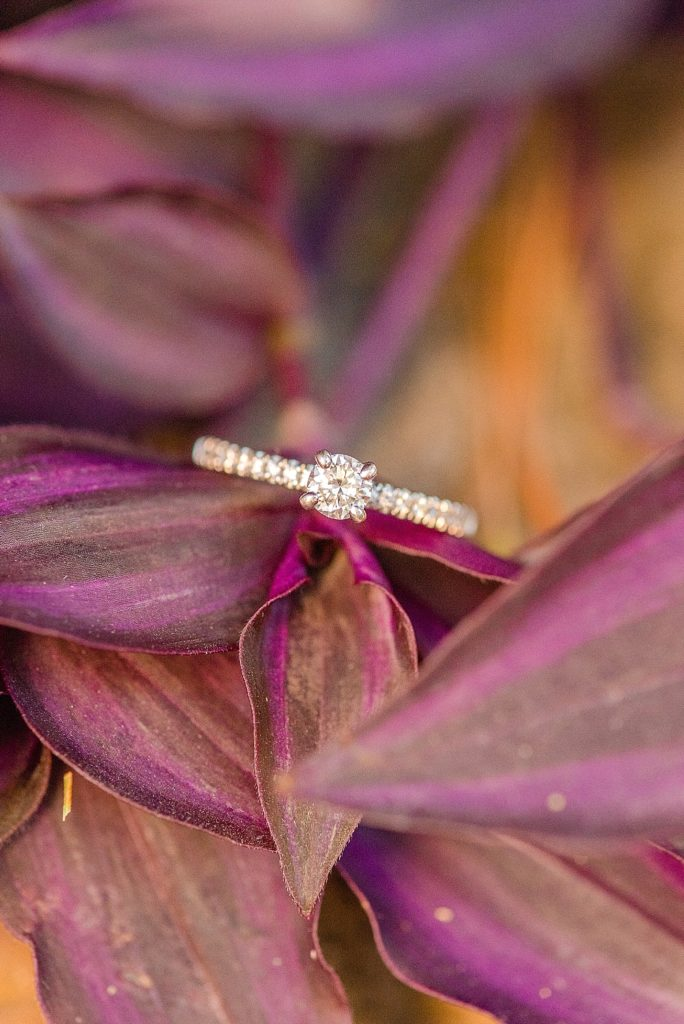 engagement ring on flowers at Historic Stonebrook Farm with Renee Nicolo Photography