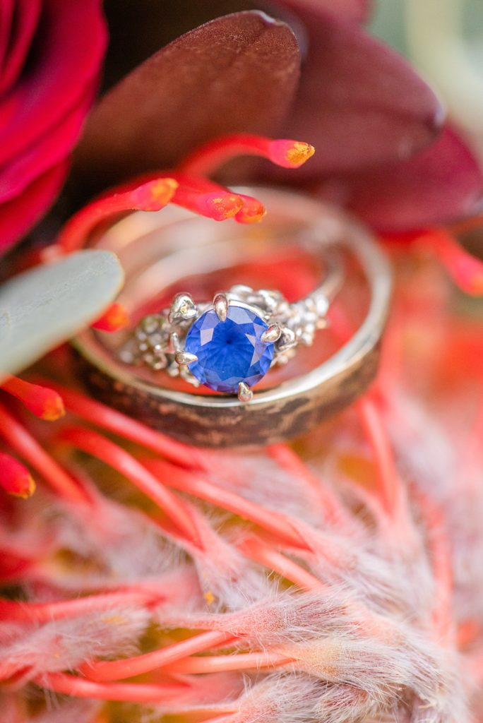 Renee Nicolo Photography photographs bride's engagement ring