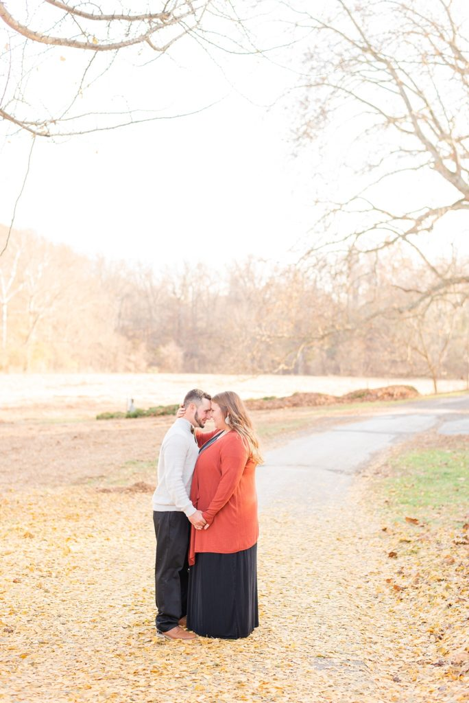 Pennsylvania engagement session by Renee Nicolo Photography