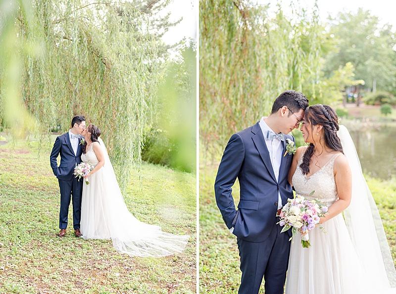 New Jersey wedding portraits under willow tree
