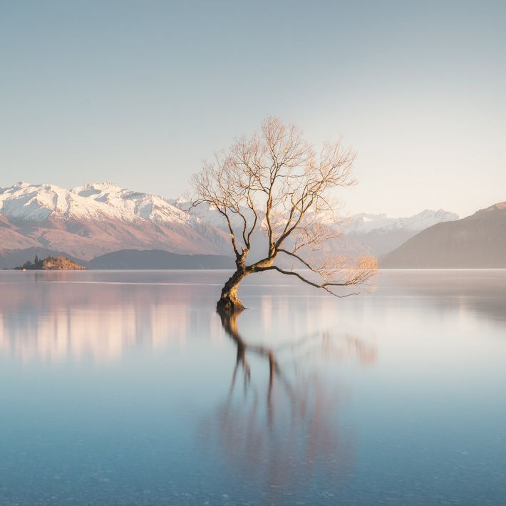 12 MUST SEE PLACES ON THE SOUTH ISLAND OF NEW ZEALAND - WANAKA TREE SUNRISE PHOTOGRAPHY