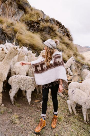Best-Things-To-Do-In-And-Around-Cusco-Peru-Llama-Blessing1