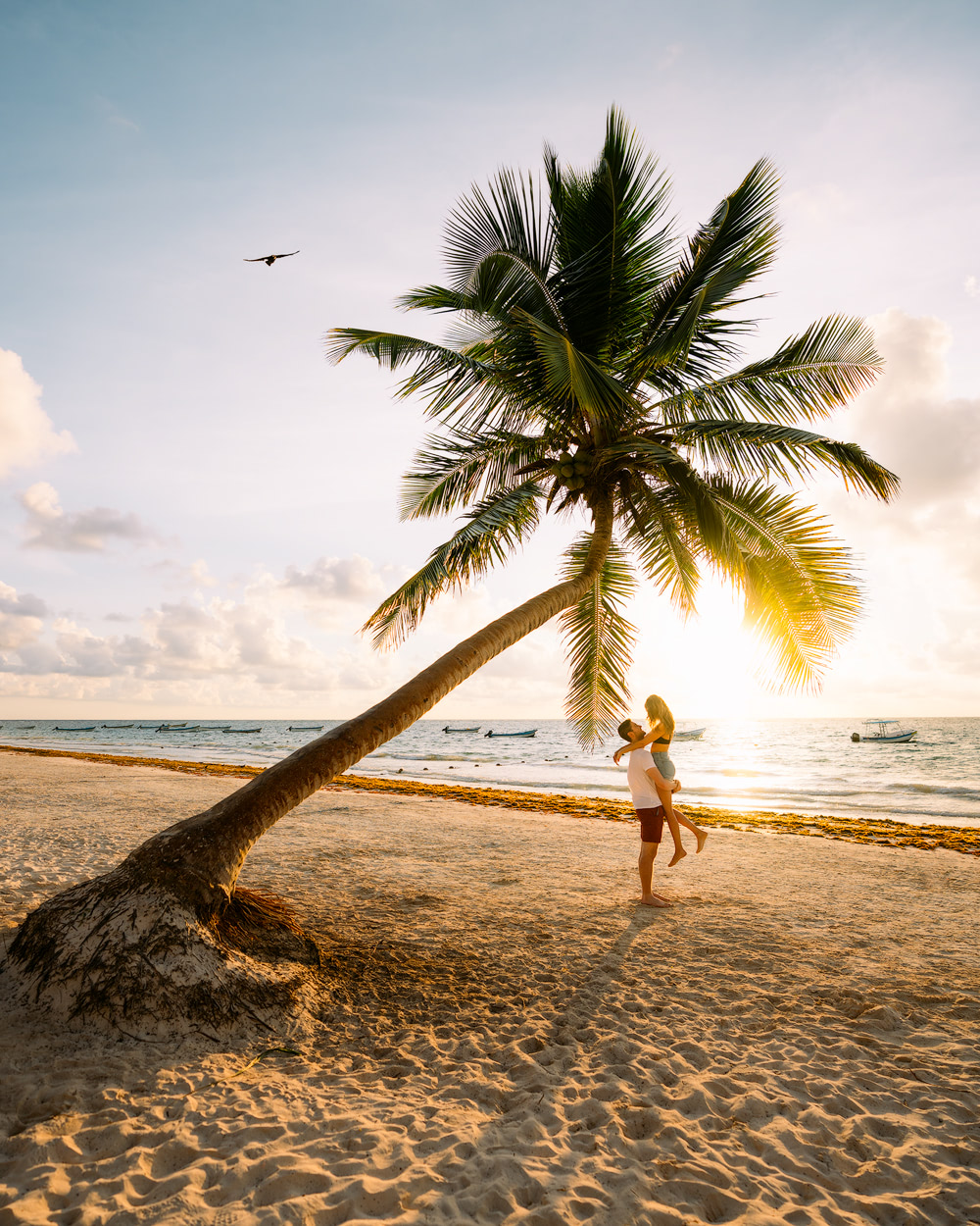 Make the Most of Your Trip to Tulum Mexico A Comprehensive Guide Playa Pariso Palm Tree 2 Renee Roaming
