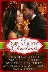 A Very Naughty Christmas – A hot new box set