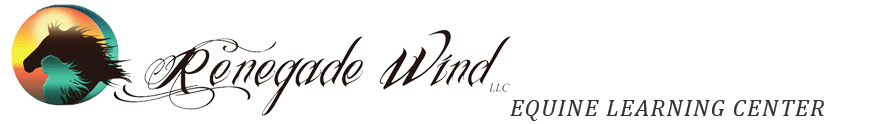 Renegade Wind LLC