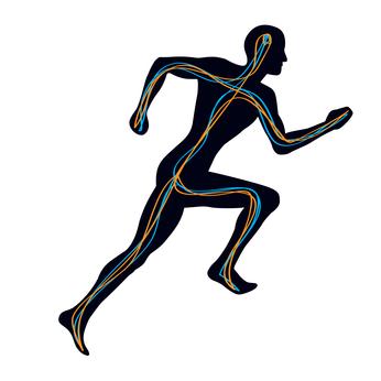 Propiocepción I: ¿Qué es la propiocepción? ¿Mejora por entrenar sobre superficies inestables? (2/2)