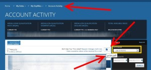 print a pdf of your skymiles acctivity before 2016
