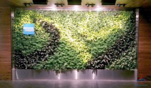 The hidden AMEX Centurion Lounge - The Centurion Lounge is located in Terminal D and is accessible via the elevator located in the Duty Free Shop near gate D6 - RenesPoints blog review (11)