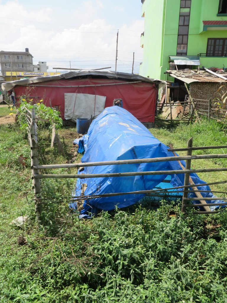 The biogas digester.