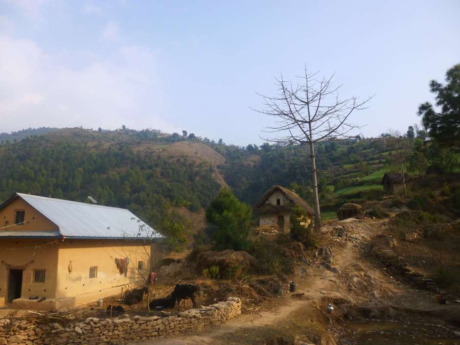 Village of Dafala
