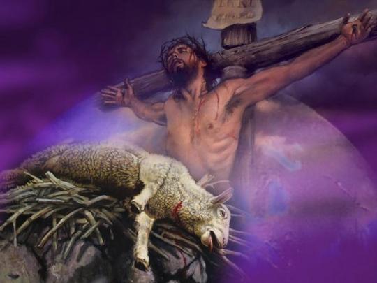0 I cross lamb