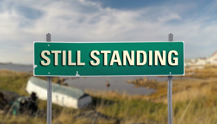 still standing renewed