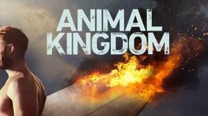 Animal Kingdom Season 3 On TNT: Cancelled or Renewed Status, Premiere Date