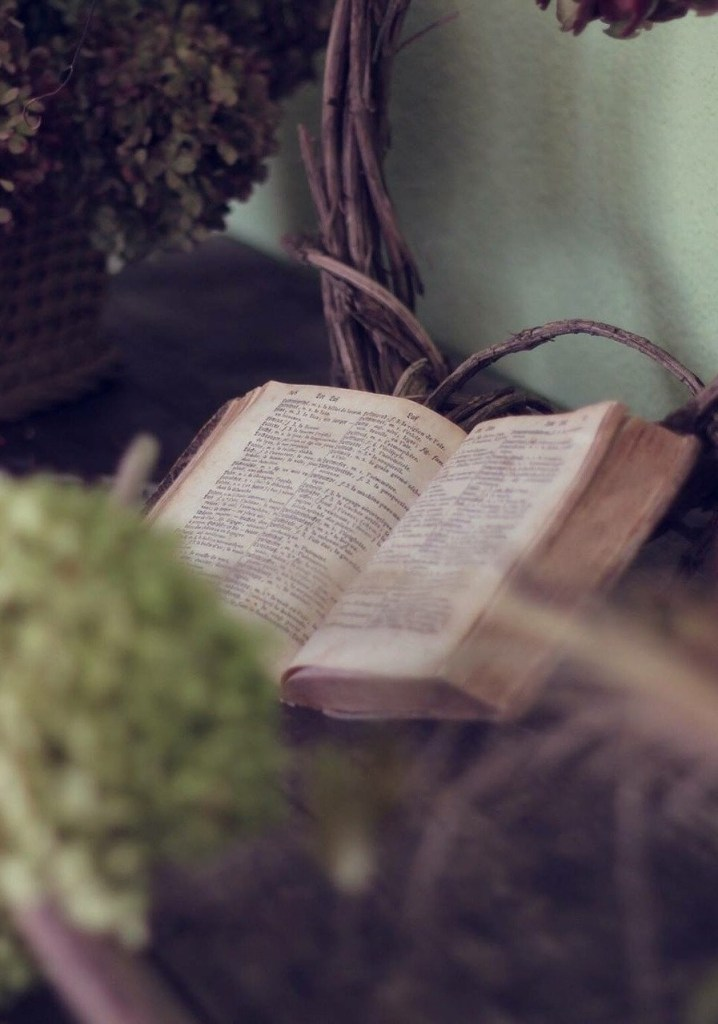 Small Group Bible Studies 54241