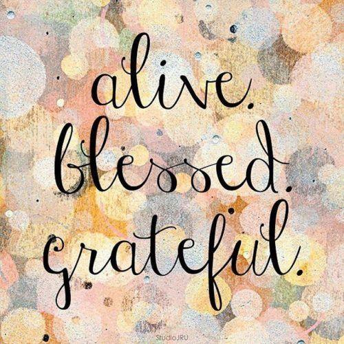 alive, blessed, grateful