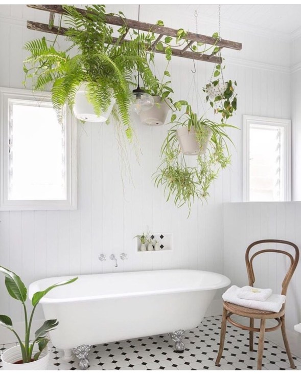 Lovely House Plants In The Bathroom05