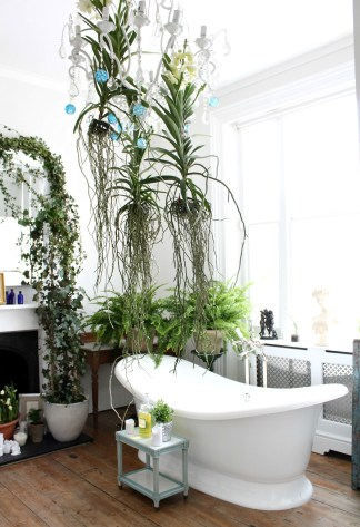 Lovely House Plants In The Bathroom15