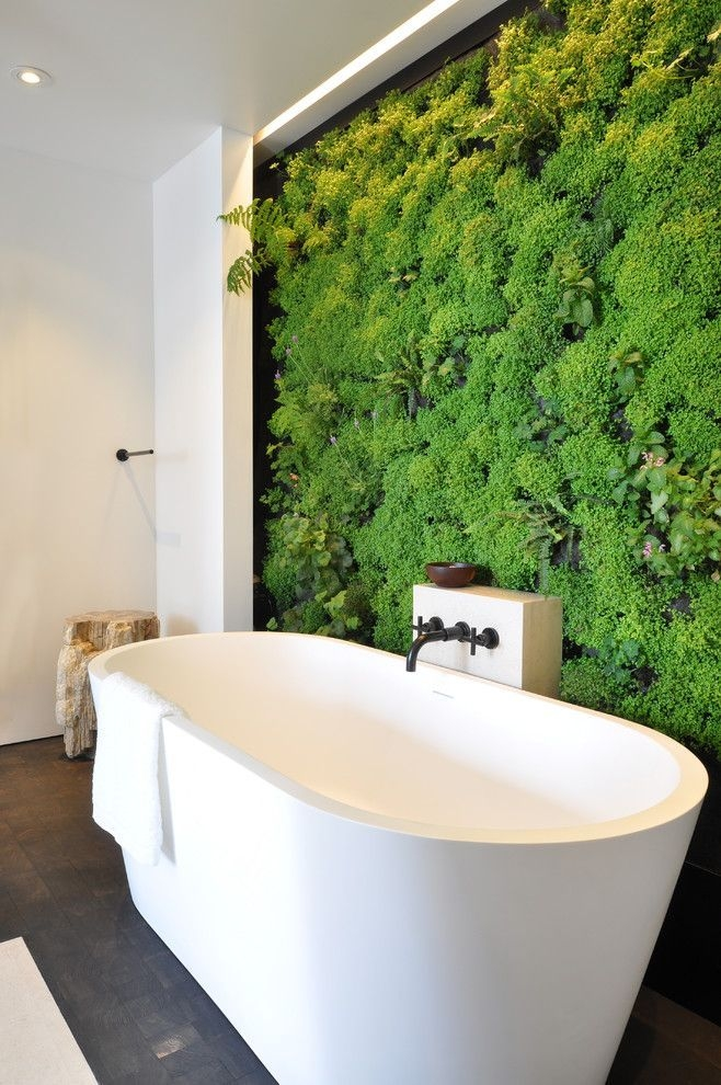 Lovely House Plants In The Bathroom17