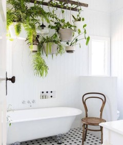Lovely House Plants In The Bathroom29