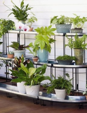 Plant Stand Design For Indoor Houseplant 33