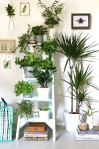 Plant Stand Design For Indoor Houseplant 37