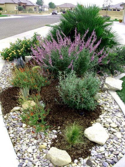 River Rock Landscape And Lavender Bush For Your Outdoor 01