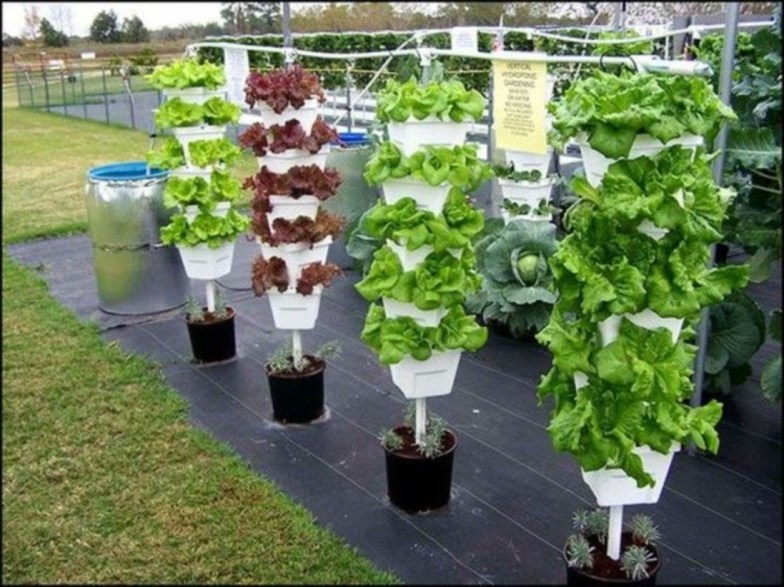Vertical Vegetable Garden Ideas To Inspire You 03