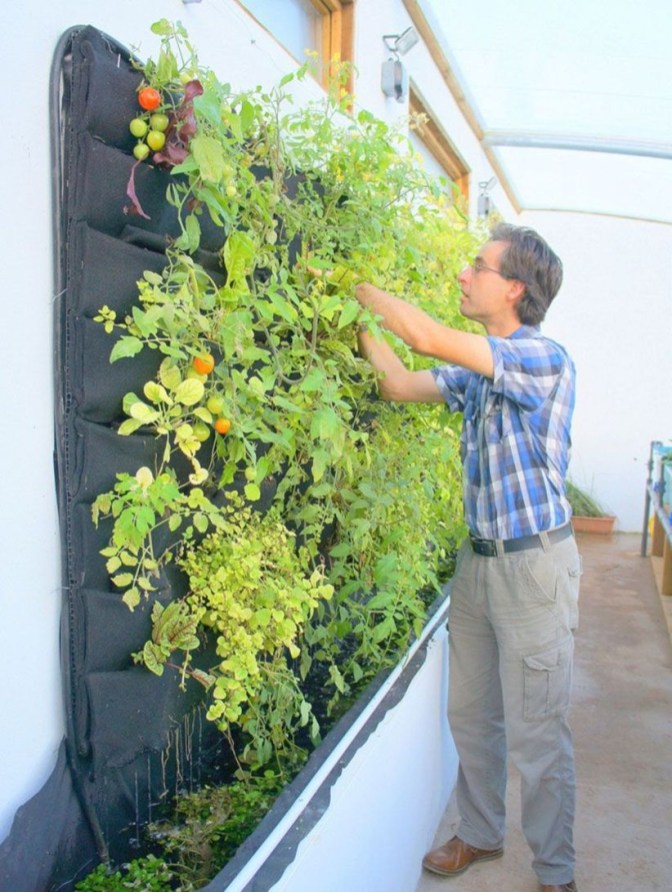 Vertical Vegetable Garden Ideas To Inspire You 06