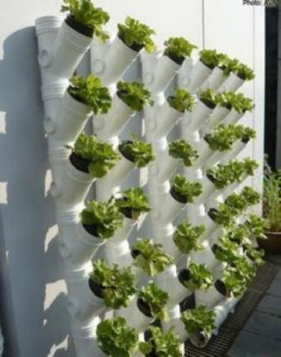 Vertical Vegetable Garden Ideas To Inspire You 14
