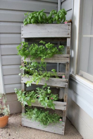 Vertical Vegetable Garden Ideas To Inspire You 28
