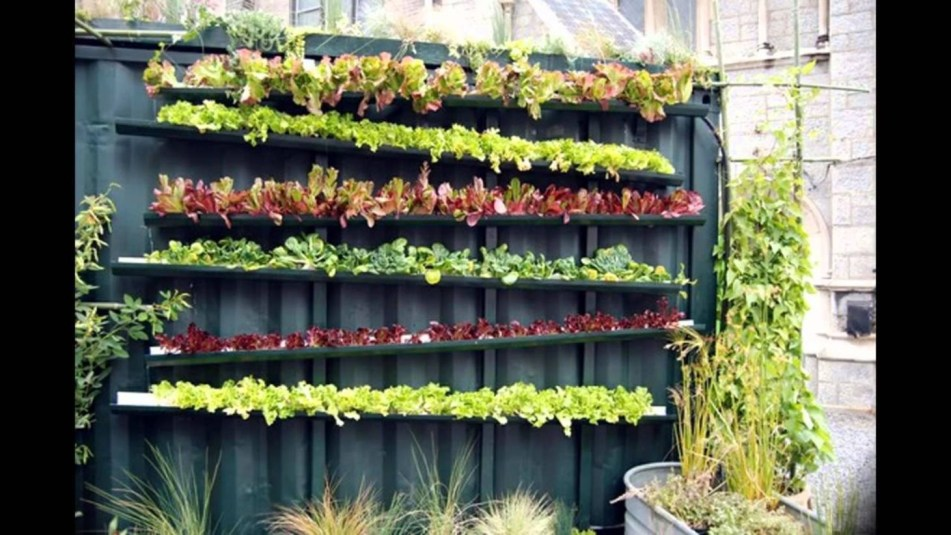 Vertical Vegetable Garden Ideas To Inspire You 31