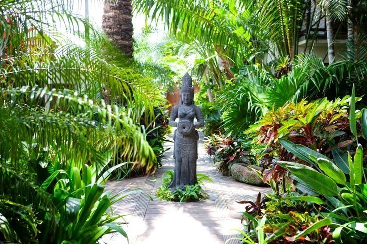Tropical Plantation Ideas You Can Try In Your Garden07